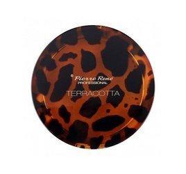 PIERRE RENE Terracotta puder brązujący - 02 Chilly Bronze